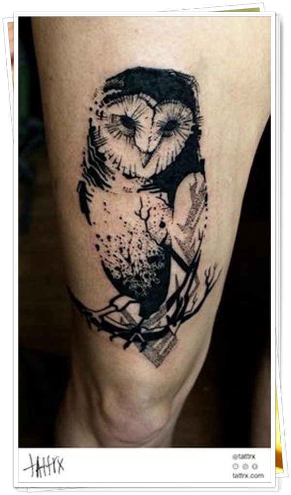 owl tattoo17